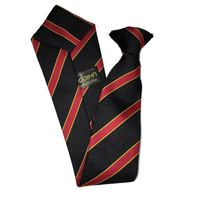 Holmes Chapel Comprehensive Arley Tie Thumbnail